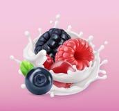 Lasowy jagody i mleka pluśnięcie Owoc i jogurt 3d ikona wektor royalty ilustracja