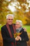 lasowy jesień przespacerowanie fotografia royalty free