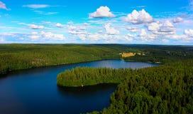 Lasowy jezioro Obraz Stock