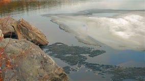 Lasowy jezioro zdjęcie wideo