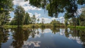 Lasowy jezioro i drzewa niebieska spowodowana pola pełne się chmura dzień zielonych roślin krajobrazu ruchu pokaz mały nie niebo  Zdjęcie Stock