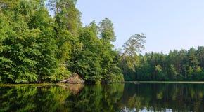 Lasowy jezioro krajobraz Obrazy Royalty Free