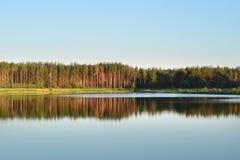 Lasowy jezioro Las odbija w jeziorze symetria obraz stock