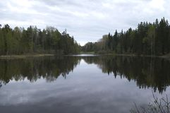 Lasowy jezioro na północnej wyspie obrazy royalty free