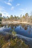 Lasowy jezioro niebieska spowodowana pola pełne się chmura dzień zielonych roślin krajobrazu ruchu pokaz mały nie niebo było psze Zdjęcia Royalty Free
