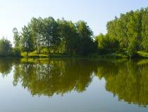 Lasowy jezioro pod niebieskim niebem Fotografia Stock