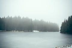 Lasowy jezioro w mgle II fotografia royalty free