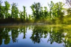 Lasowy jezioro w ranku 01 Zdjęcie Royalty Free