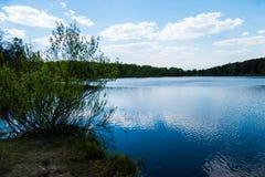 Lasowy jezioro w wiośnie Zdjęcia Royalty Free