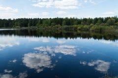 Lasowy jezioro w wiośnie Obraz Stock