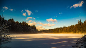 Lasowy jezioro w zimie obraz royalty free