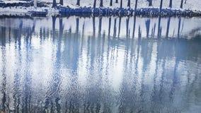 Lasowy odbicie w wodzie, czochra, śnieg zbiory