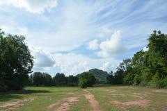 Lasowy odzyskiwanie Zdjęcia Stock