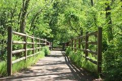 Lasowy ogrodzenie Zdjęcia Stock