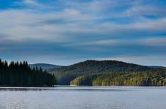 Lasowy otaczanie sztuczny jezioro zdjęcie royalty free