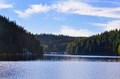 Lasowy otaczanie sztuczny jezioro Zdjęcia Royalty Free