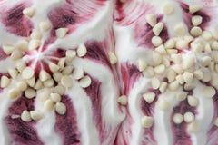 Lasowy Owocowy lody z Białą czekoladą, Odgórny strzał Zdjęcie Stock
