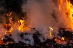Lasowy pożar przy noc całym terenem zakrywającym płomieniem i chmury zmrok dymimy Zniekształcający szczegółu należny wysokotemper zdjęcia stock