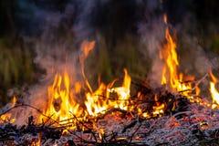 Lasowy pożar przy noc całym terenem zakrywającym płomieniem i chmury zmrok dymimy Zniekształcający szczegółu należny wysokotemper zdjęcie stock