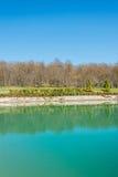 Lasowy pobliski ładny wodny staw zdjęcia stock