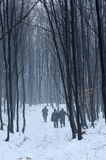 lasowy polowanie Zdjęcie Stock