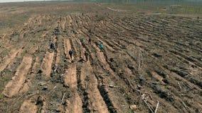 Lasowy przywr?cenie Ekologii konserwacja Powietrzna strzelanina zdjęcie wideo