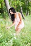 lasowy ranek Zdjęcia Stock