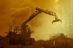 Lasowy rozcięcie, palić lasu odpady Dym i ogień, ciągnik n Fotografia Stock