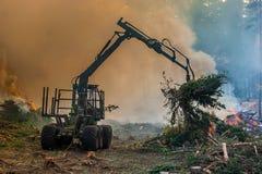 Lasowy rozcięcie, palić lasu odpady Dym i ogień, ciągnik n Zdjęcie Stock