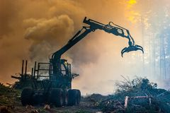 Lasowy rozcięcie, palić lasu odpady Dym i ogień, ciągnik n Fotografia Royalty Free