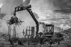 Lasowy rozcięcie, palić lasu odpady Dym i ogień, ciągnik n Obraz Royalty Free