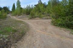Lasowy skrzyżowanie Zdjęcia Royalty Free