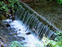 Lasowy strumień wśród drzew z małą siklawą, pięknymi kolorami i czystością wizerunek, Pokój i zaciszność Fotografia w wczesnym su obraz stock