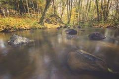 Lasowy strumień w jesieni, kolorowy zaszywanie, bieżącej wody falle Fotografia Royalty Free