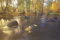 Lasowy strumień w jesieni, kolorowy zaszywanie, bieżącej wody falle Obrazy Stock