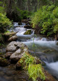 Lasowy strumień biega nad skałami, mała siklawa Fotografia Royalty Free