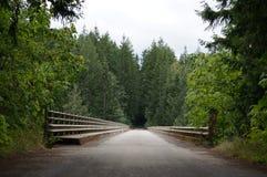 Lasowy wejście Fotografia Stock