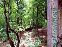 lasowy widok przy Maharishi Ashram, Bitelsi świątynia w Rishikesh, India zdjęcia royalty free