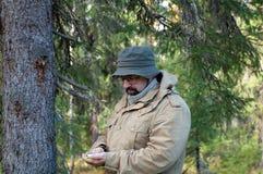 lasowy wycieczkowicz Fotografia Royalty Free