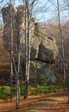 lasowy wyniosły kamień zdjęcie stock