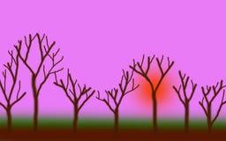 Lasowy zmierzch 02 Obraz Royalty Free