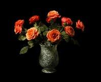 lasrosas Royaltyfria Bilder