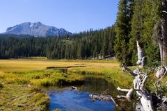 Lassen Mountain Stream Royalty Free Stock Images