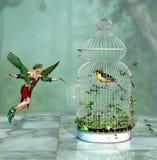 Lassen Sie den freien Vogel Stockfoto