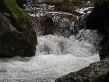 Lassen Sie Fluss laufen stockfotos