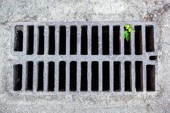 Lassen Sie Gitter in der sandigen Oberfläche ab Stockbilder
