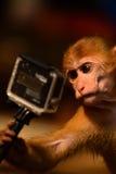 Lassen Sie mich ein selfie nehmen Lizenzfreies Stockfoto