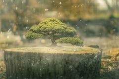 Lassen Sie uns die Bäume speichern lizenzfreie abbildung