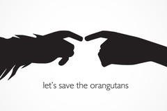 Lassen Sie uns die Orang-Utans speichern Lizenzfreies Stockbild