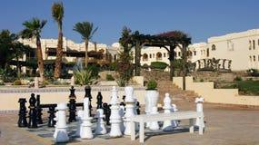 Lassen Sie uns im Schach spielen? Stockfoto